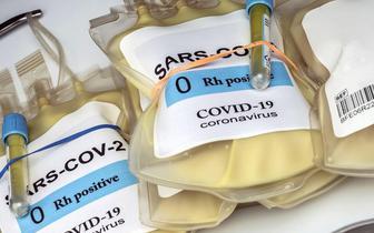 Minister Niedzielski: Pozyskanie osocza ozdrowieńców zagadnieniem krytycznym w związku z rosnącą liczbą zgonów z powodu COVID-19