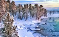 Polarne i białe noce nie ratują populacji Laponii