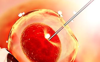 Pierwsza klinika in vitro not-for-profit w Anglii: co o tym sądzą eksperci? [SONDA]