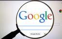 Unijne organy antymonopolowe zainteresowane praktykami Google'a