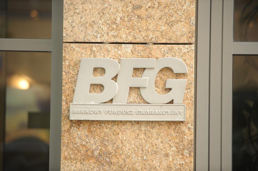 Bankowy Fundusz Gwarancyjny (BFG)