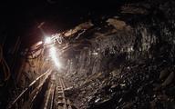 Górniczy projekt na razie wygrywa
