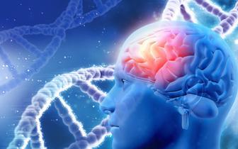 Zidentyfikowano 13 nowych mutacji genów związanych z chorobą Alzheimera