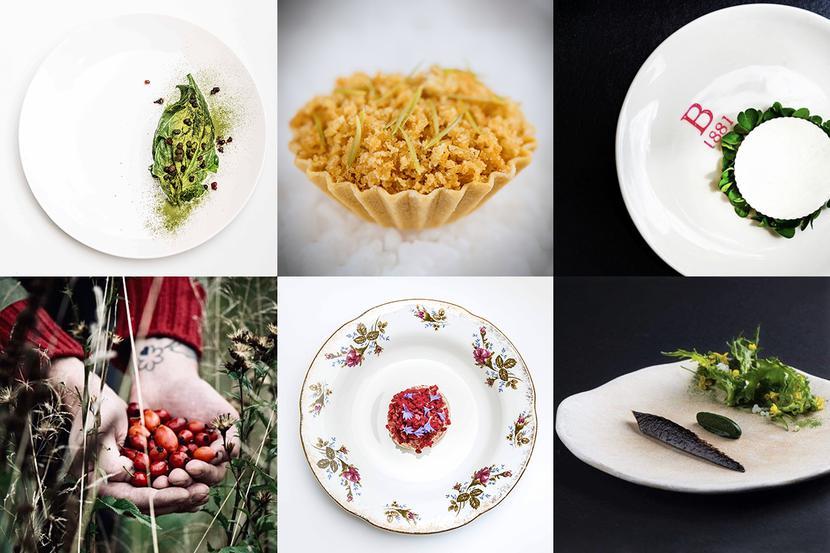 Dania i składniki z menu restauracji Bottiglieria 1881.