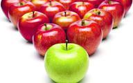 Polskie jabłka omijają embargo