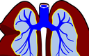 Olsztyn: naukowcy opracowali analizator przepływu powietrza