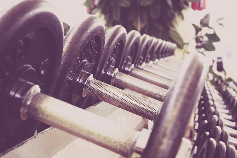 Fitness, siłownia