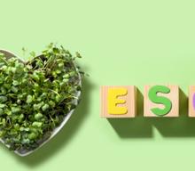 ESG compliance — czym jest i jak wpływa na zarządzanie biznesem?