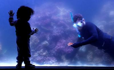Marcelo Noone-Taylor obserwuje akwarystę Jeremy'ego Simmonsa, który w zbiorniku rafowym londyńskiego zoo sadzi koralowce skonfiskowane nielegalnym handlarzom. Londyn, 16 maja 2021 r.