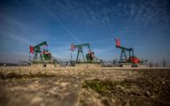 Duży spadek zapasów ropy naftowej w USA