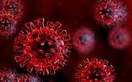 Rekordowo zmutowany wariant koronawirusa z Tanzanii
