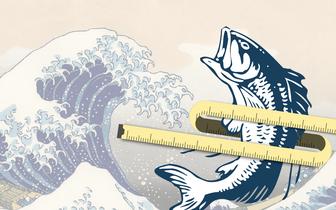 Tłuszcz z ryb pomaga schudnąć?