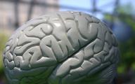 Migreny zmieniają strukturę mózgu