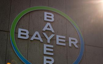 Bayer szuka 400 specjalistów IT, płaci za ich polecenie