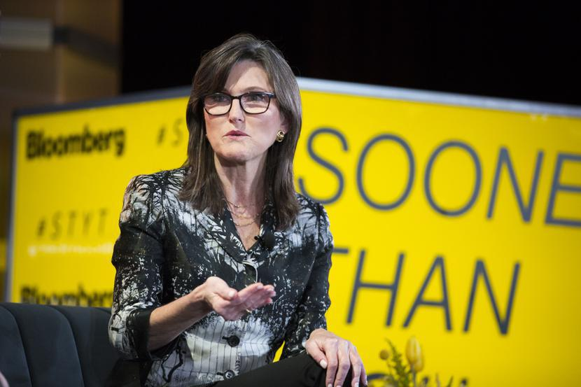 Cathie Wood, fot. Bloomberg