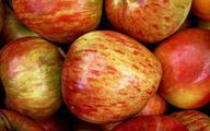 Firmowi jabłkożercy zjedli 159 527 kilogramów