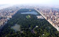 Moody's obniża rating Nowego Jorku