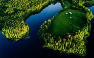 2020: najcieplejszy rok w historii Finlandii