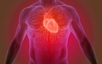 Program KONS potrzebny bardziej niż kiedykolwiek. Niewydolność serca to nowa epidemia