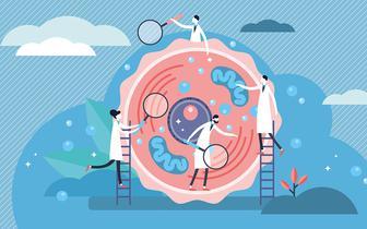 W poszukiwaniu definicji podłoża genetycznego cukrzyc monogenowych