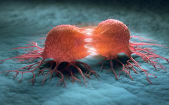 Polscy i amerykańscy specjaliści zaczynają współpracę w walce z rakiem