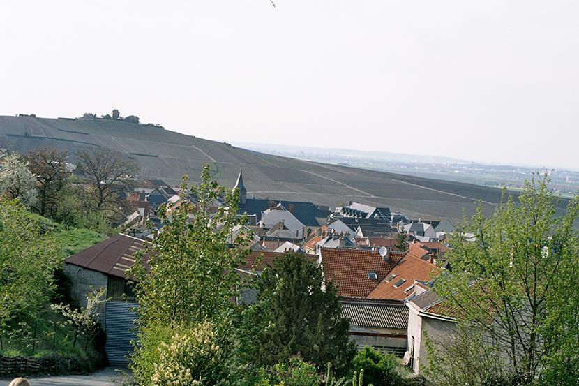 Krajobraz Szampanii