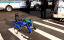 Pies-robot w nowojorskiej policji wzbudza kontrowersje
