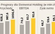 Brak Gorenje ugodzi w Elemental Holding
