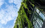 Nowy rekord emisji zielonych obligacji