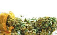 Medyczne użycie marihuany nadal ograniczone
